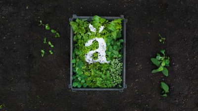 Hållbar mat i fokus för årets Änglamarksprisfinalister