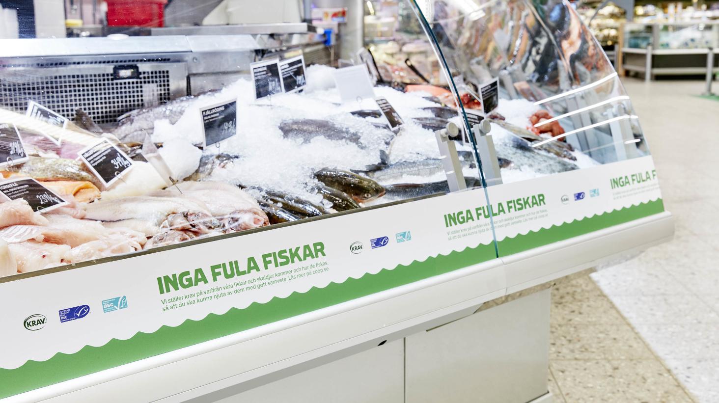 Coop inleder arbetet för MSC-certifiering av alla fiskdiskar