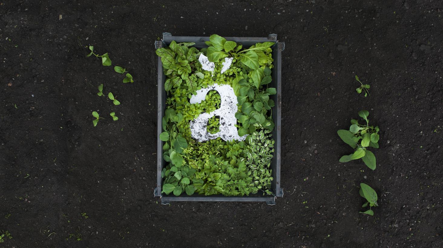 Änglamark är Sveriges grönaste varumärke
