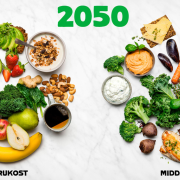 Matometern_Så_äter_vi_2050_Bild_2050 Webben