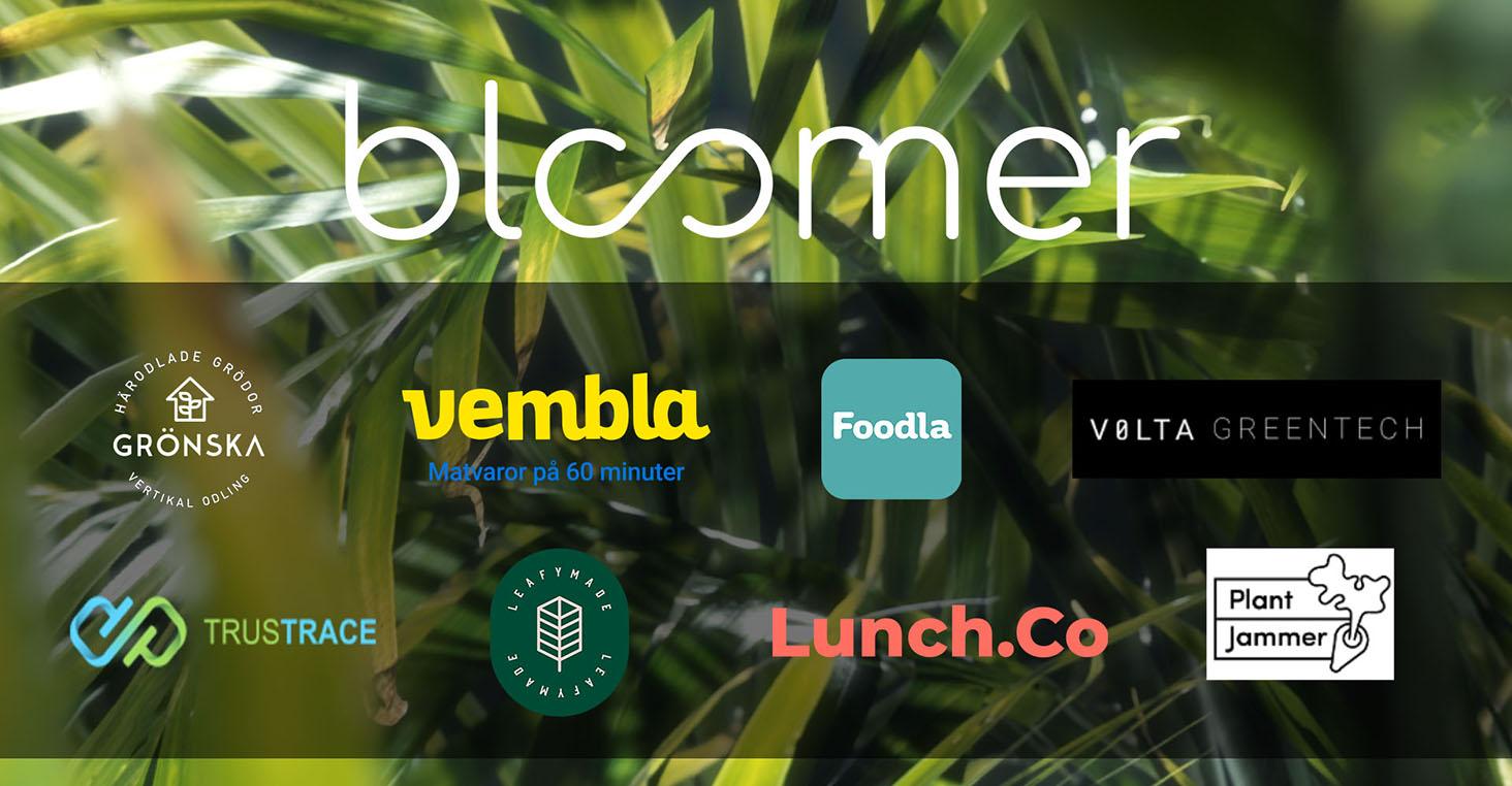 Åtta startups antagna till acceleratorn Bloomer